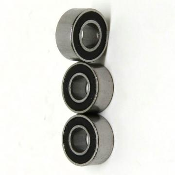 Hot Sell Deep Groove Ball Bearing 61905 2RS